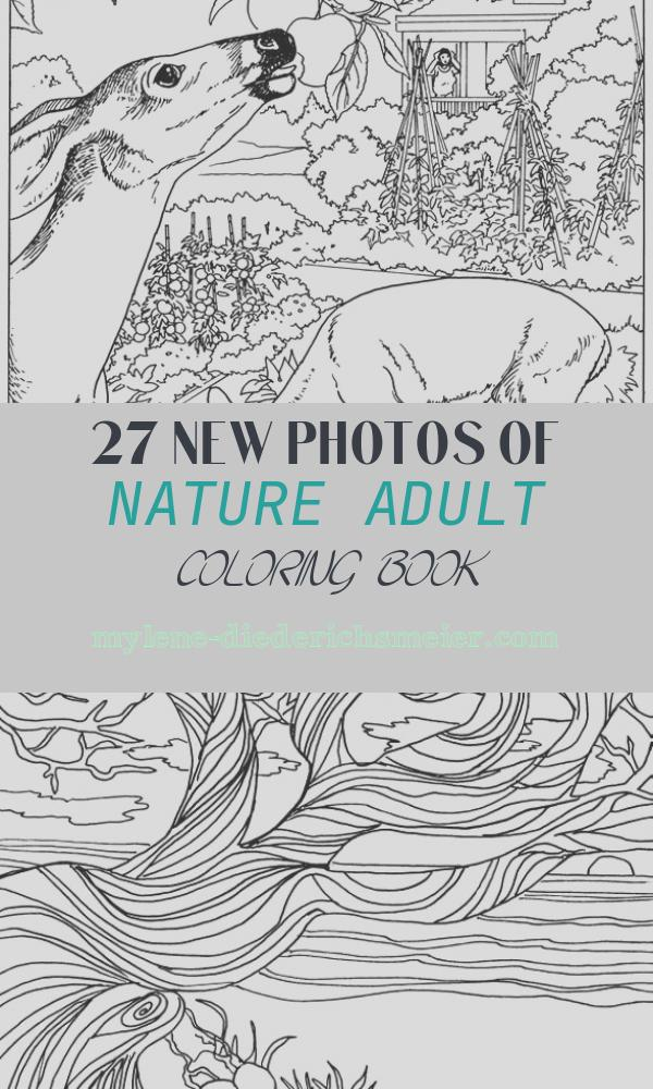 Nature Adult Coloring Book Inspirational Free Printable Nature Coloring Pages for Kids Best