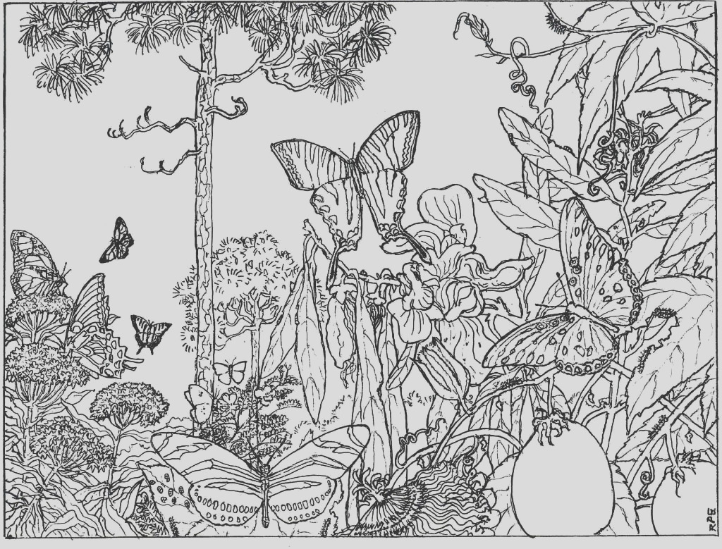 nature alive forest hd coloring pages