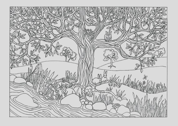 tree river nature scene coloring page