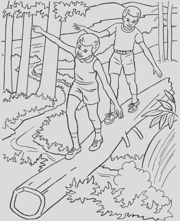 coloring pages for adults nature