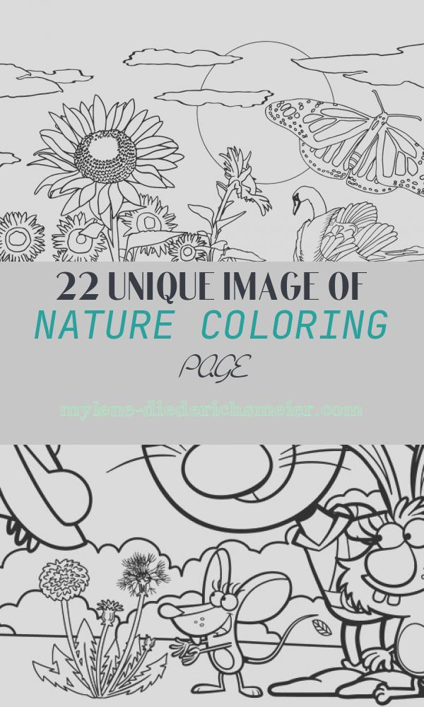 Nature Coloring Page Unique Free Printable Nature Coloring Pages for Kids Best