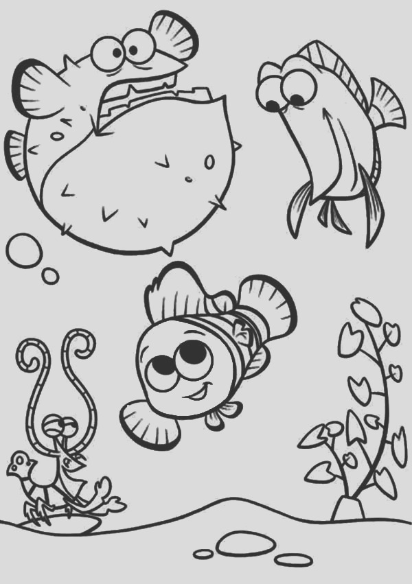 puffer fish with nemo coloring page