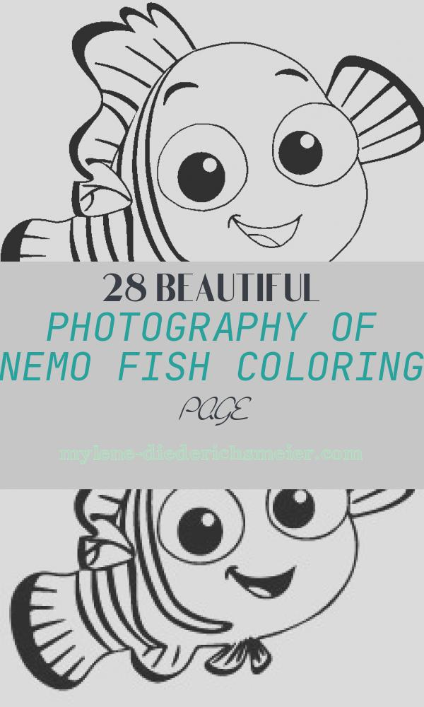 Nemo Fish Coloring Page Inspirational Nemo Cute Fish Coloring Pages