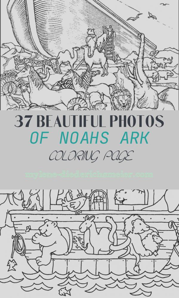 Noahs Ark Coloring Page Best Of Noah S Ark Printable Coloring Pages