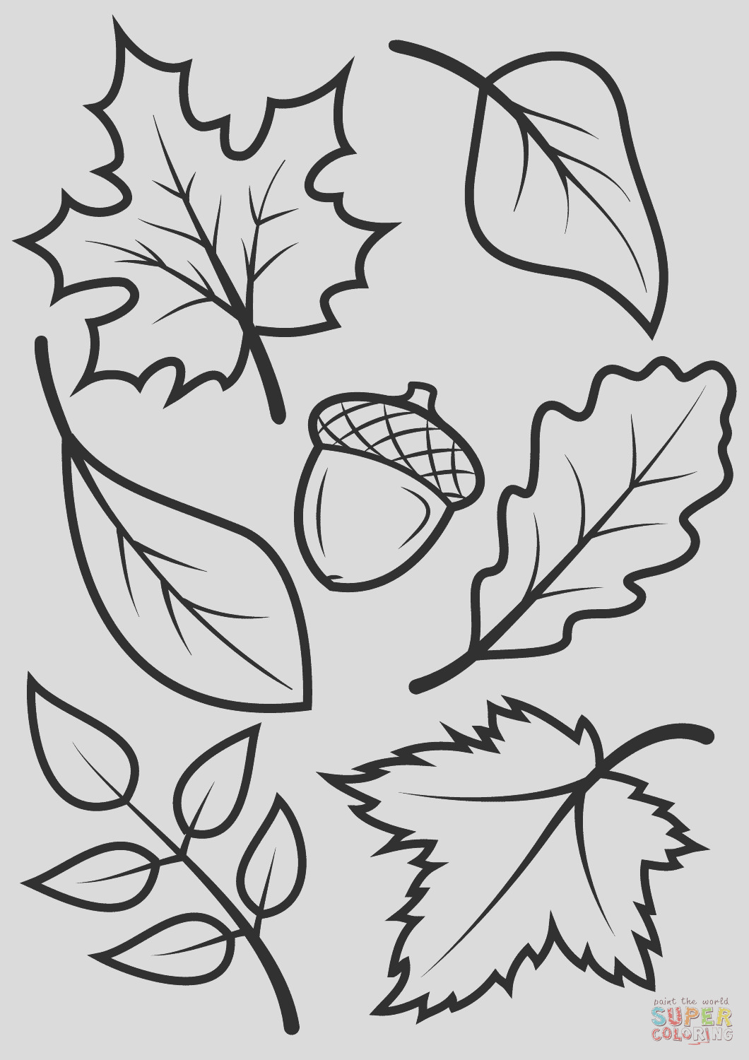 fall free printable adult coloring pages pat catans blog free printable fall coloring pages