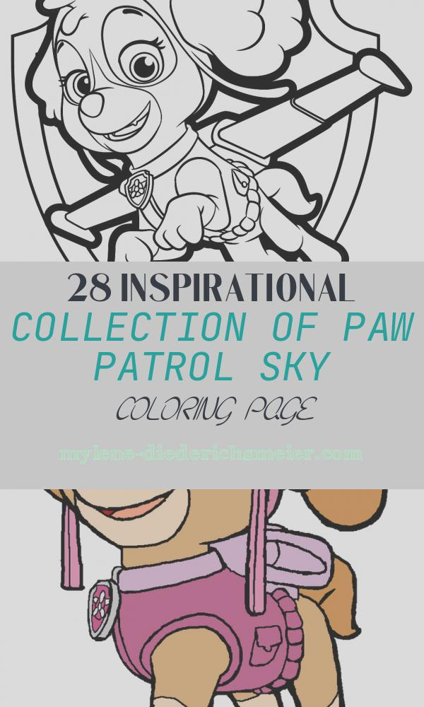 Paw Patrol Sky Coloring Page Inspirational Paw Patrol Coloring Pages Sky at Getcolorings