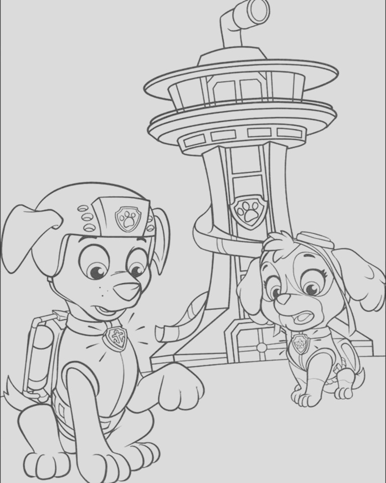 kids printable paw patrol coloring pages zuma and sky