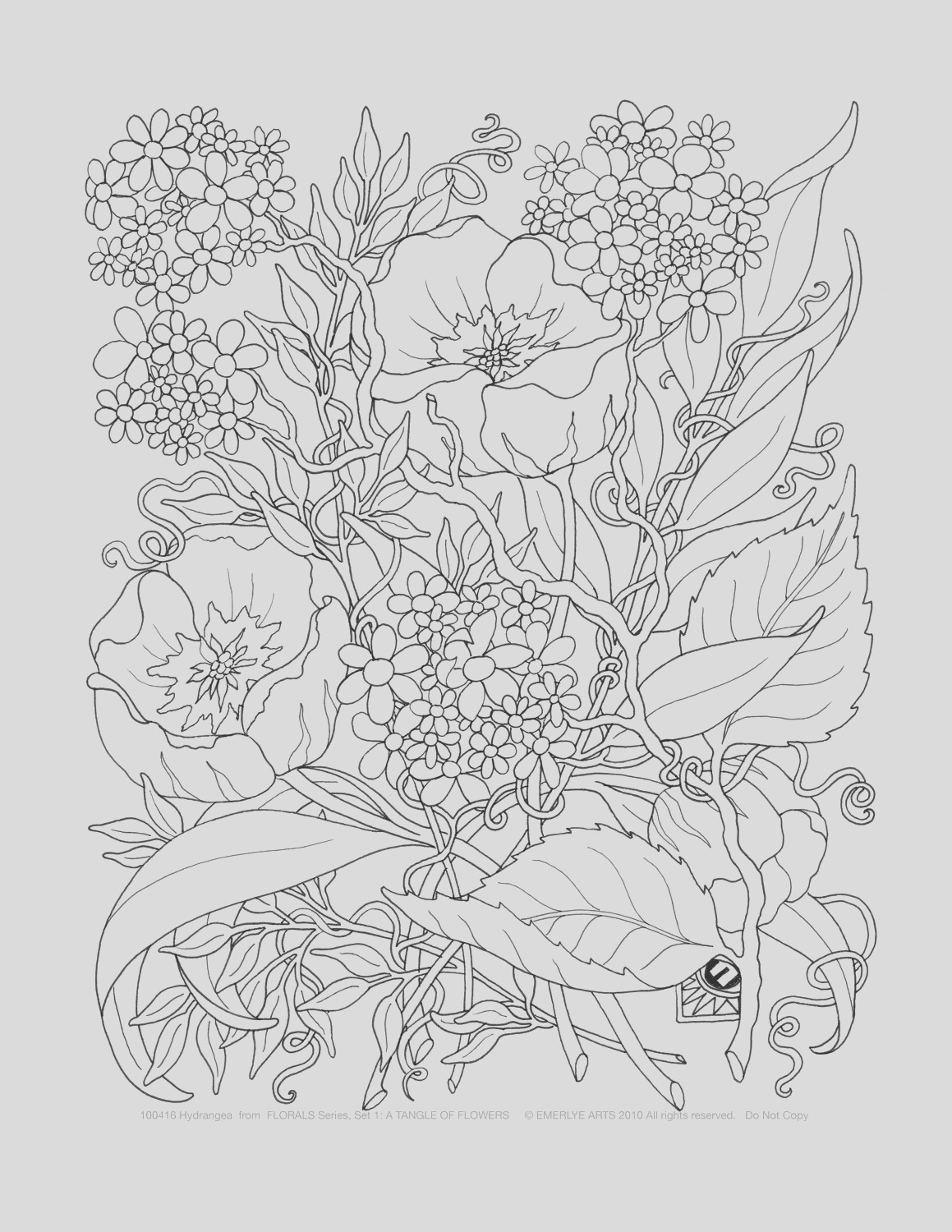 adult coloring pages a tangle of flowers