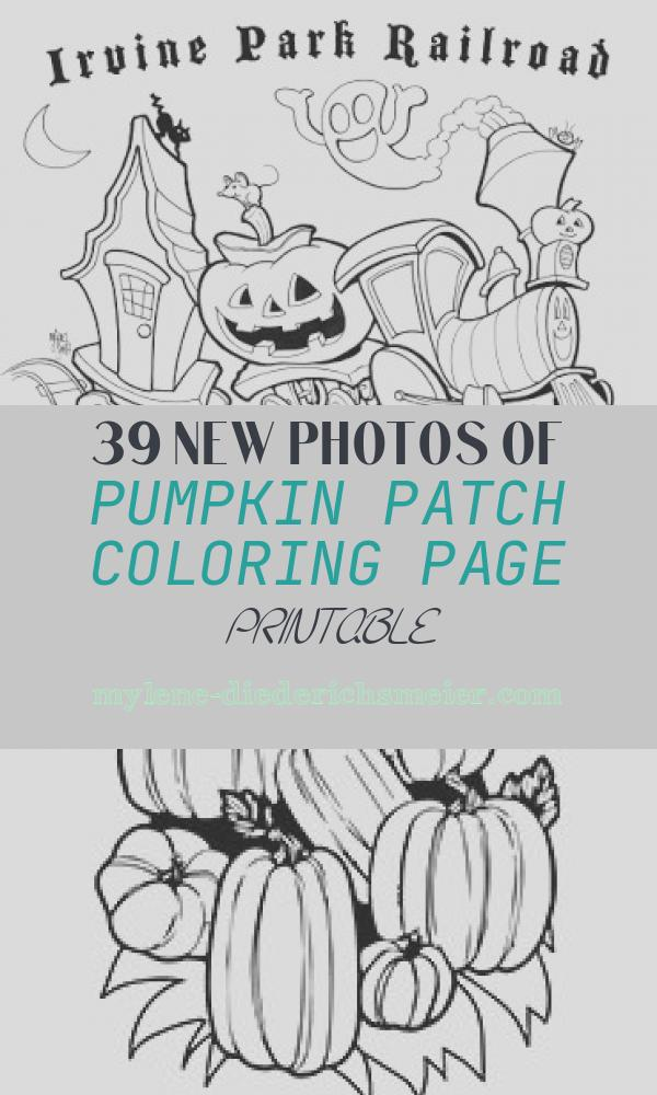 Pumpkin Patch Coloring Page Printable Unique Transmissionpress Pumpkin Patch Coloring Page