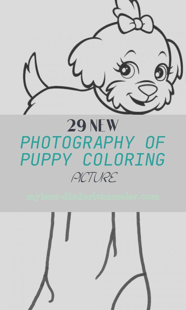 Puppy Coloring Picture New Free Printable Puppies Coloring Pages for Kids