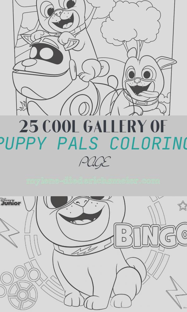 Puppy Pals Coloring Page Elegant Puppy Dog Pals Coloring Page Activity