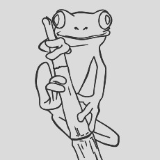 delightful frog coloring pages