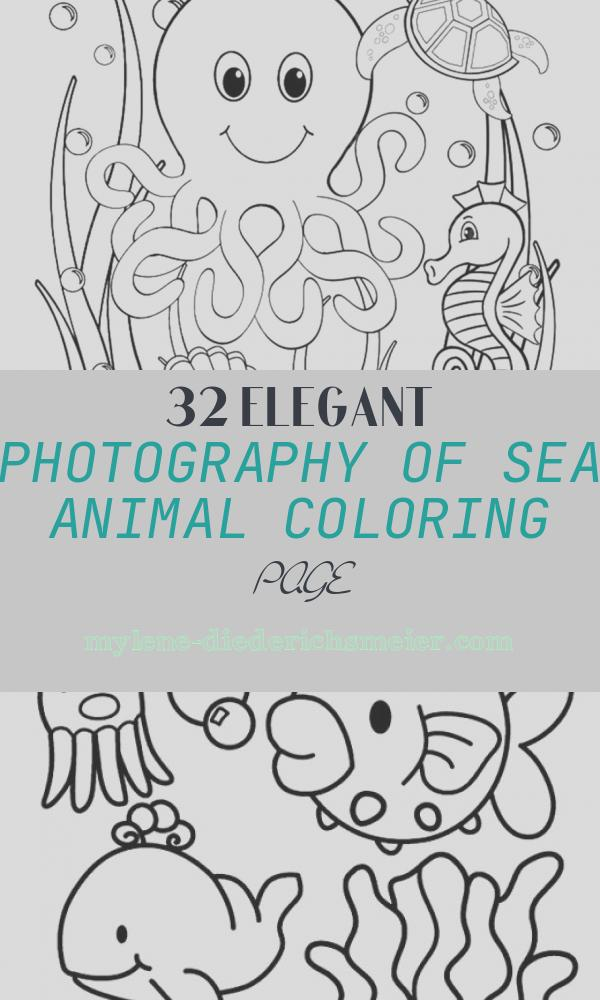 Sea Animal Coloring Page Beautiful 35 Best Free Printable Ocean Coloring Pages Line