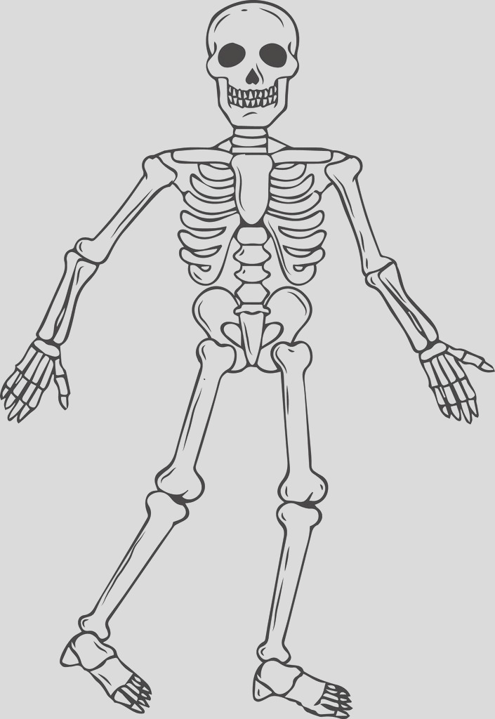 full body skeleton halloween coloring page a4319