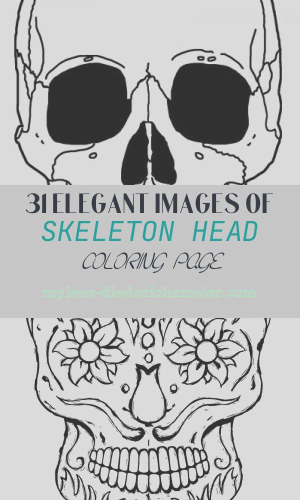 Skeleton Head Coloring Page Best Of Printable Skeleton Coloring Pages for Kids