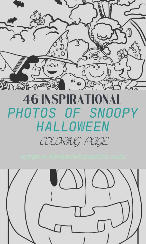 Snoopy Halloween Coloring Page Fresh 220 Best Snoopy Coloring Pages Images On Pinterest