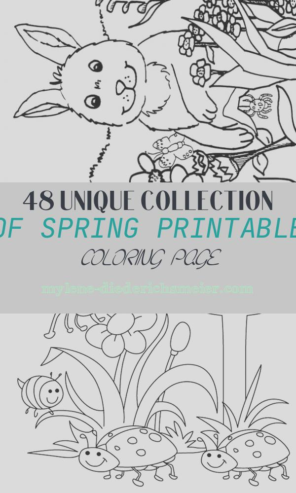 Spring Printable Coloring Page Lovely Spring Coloring Pages Best Coloring Pages for Kids