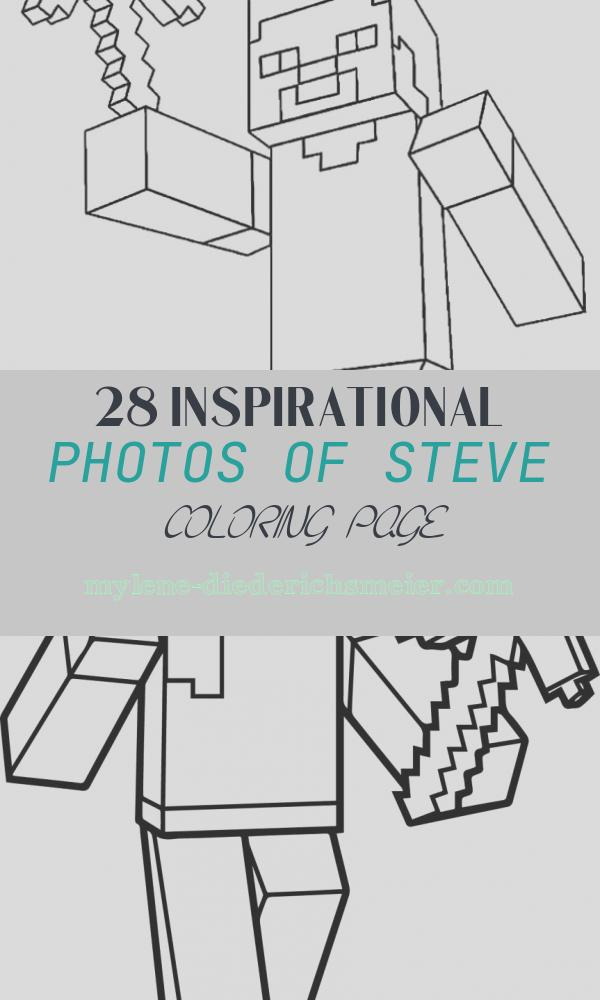 Steve Coloring Page Unique 40 Printable Minecraft Coloring Pages