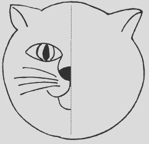animals symmetry activity coloring pages