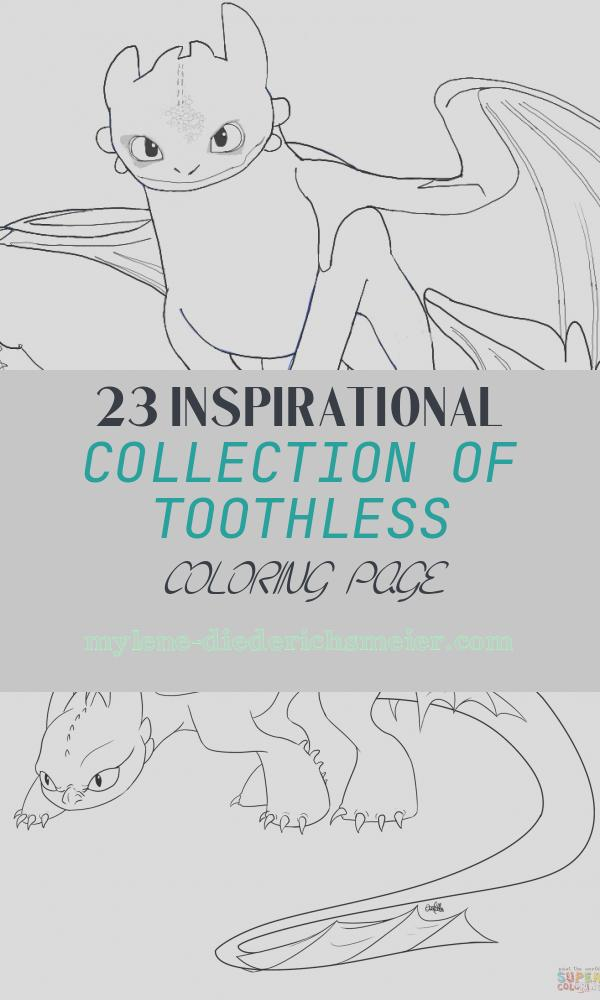 Toothless Coloring Page Beautiful How to Draw toothless From How to Train Your Dragon 2 In