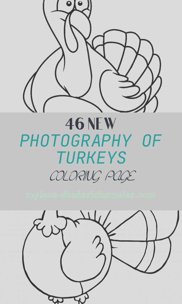 Turkeys Coloring Page Unique Free Printable Turkey Coloring Pages for Kids