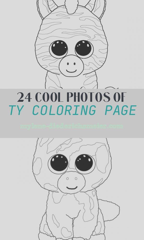 Ty Coloring Page Awesome Sapphire Bday Ideas Pinterest
