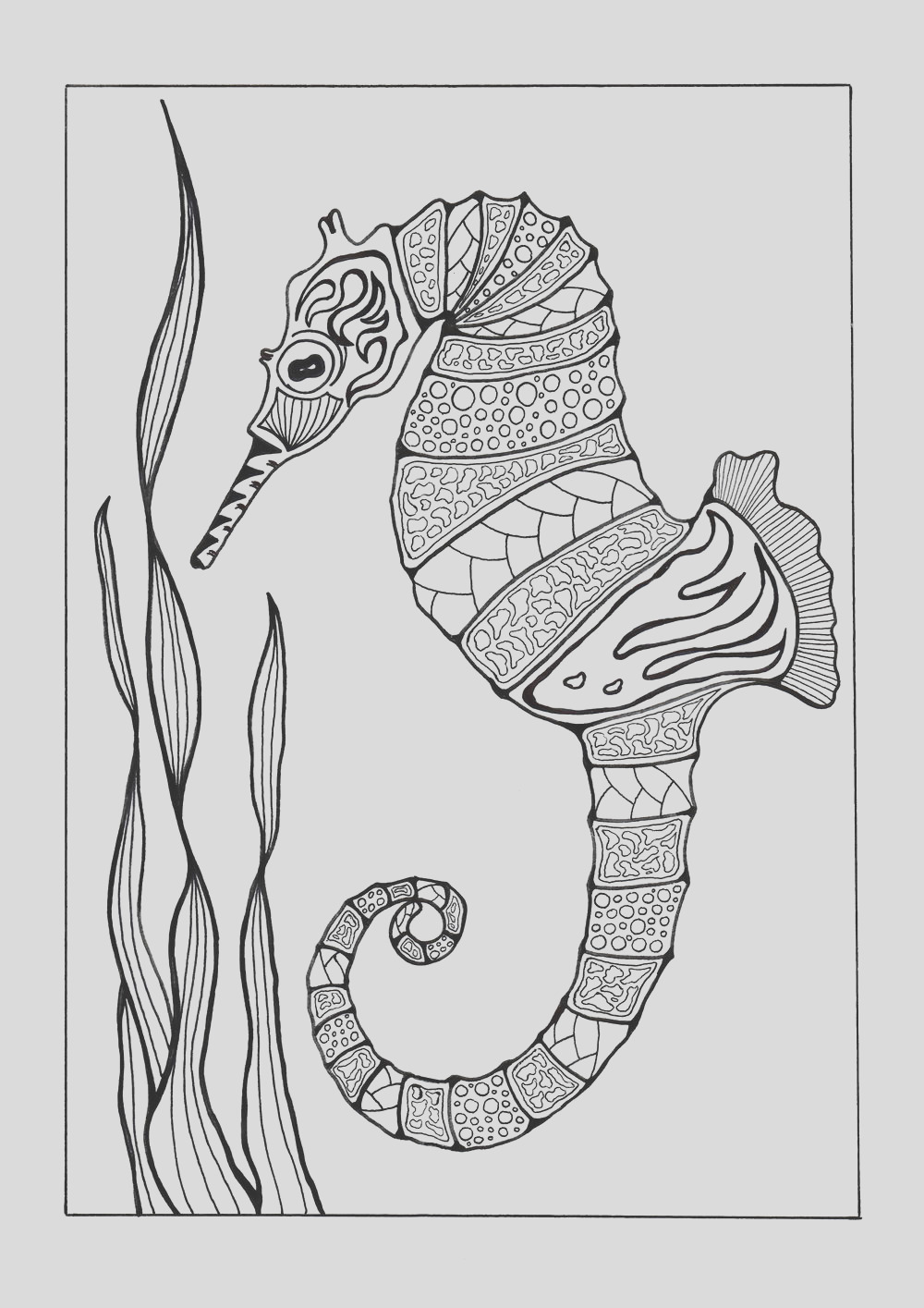 Colorful Seahorse Adult Coloring Page
