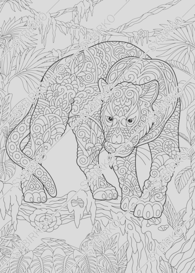 coloring pages black panther puma animal