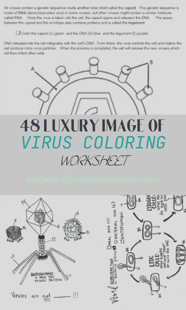 Virus Coloring Worksheet Inspirational How Do Viruses Infect Cells Coloring