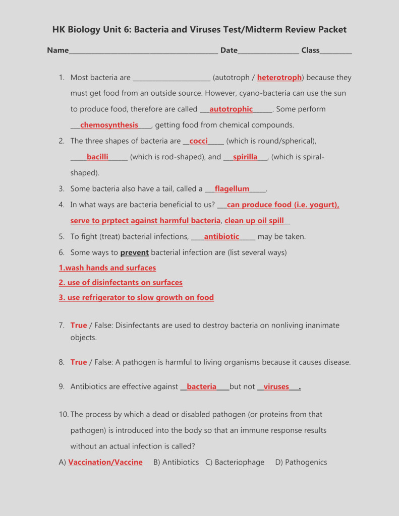 unit 6 bacteria nd viruses review sheet honors answer key