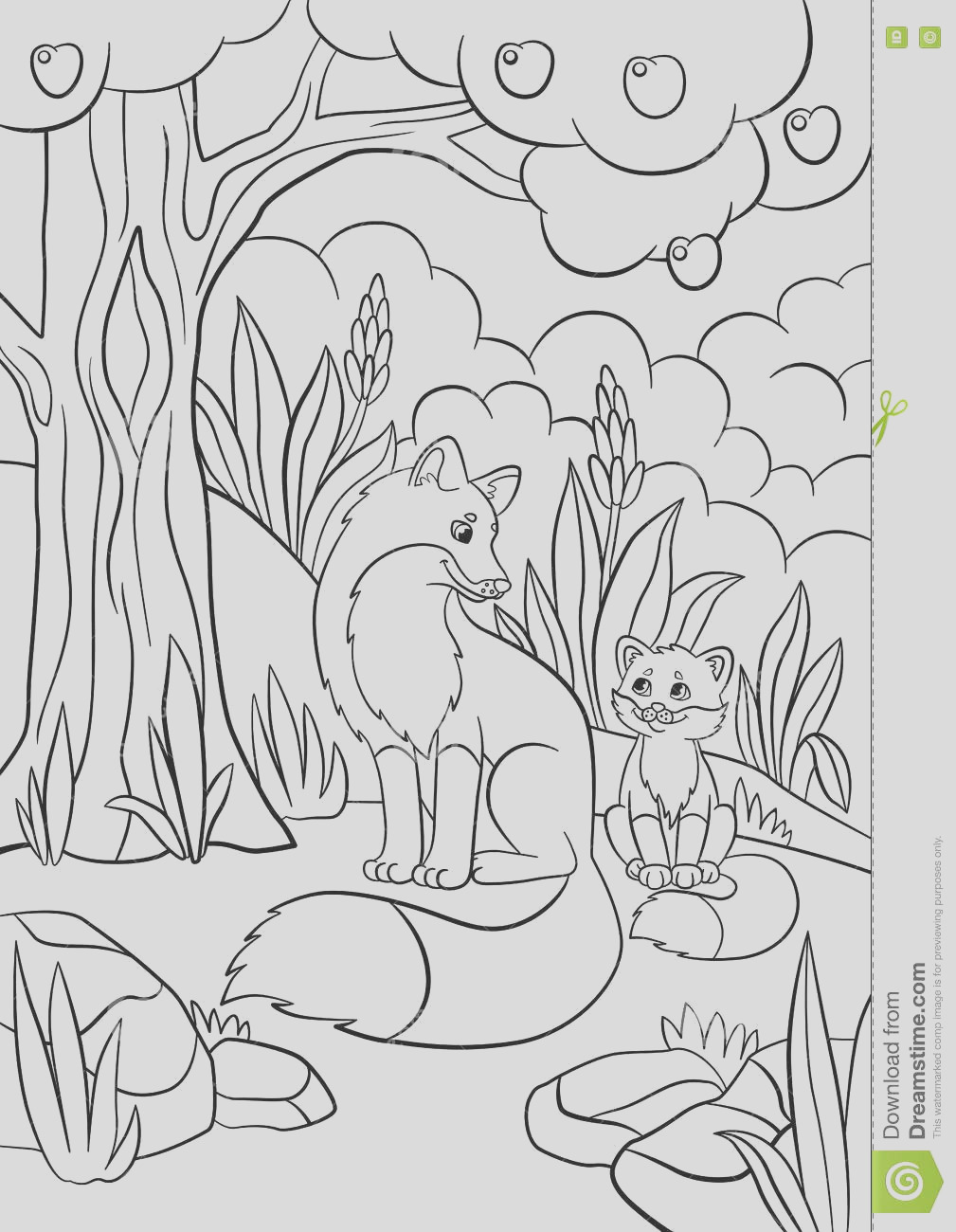 stock illustration coloring pages wild animals mother fox her little cute baby forest image
