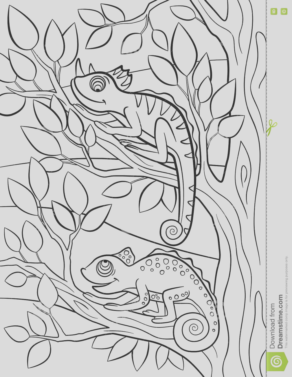 stock illustration coloring pages wild animals two little cute chameleon sits tree branch image