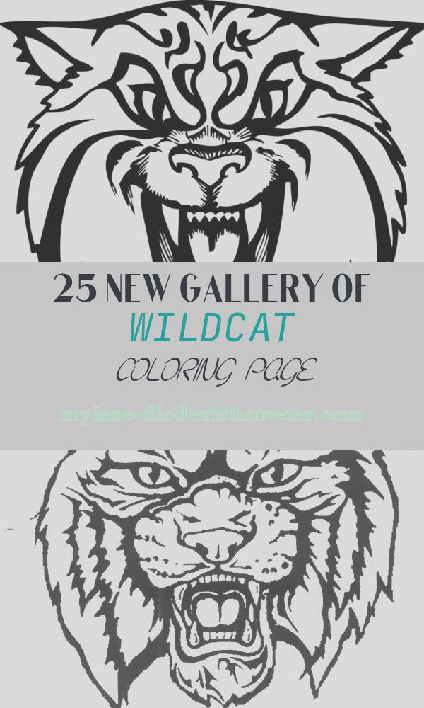 Wildcat Coloring Page Inspirational Wildcat Clipart Free Cliparts
