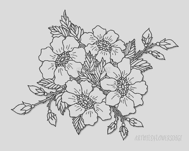 wild rose digital stamp coloring pages
