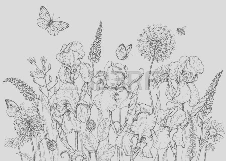 wildflower clipart black and white