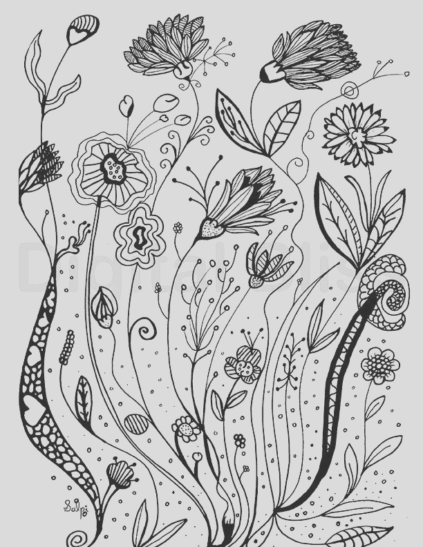 adult coloring pages whimsical wild