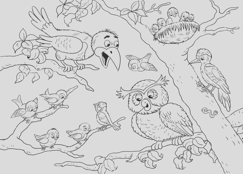 at the zoo cute woodland animals forest birds illustration for children coloring page gm