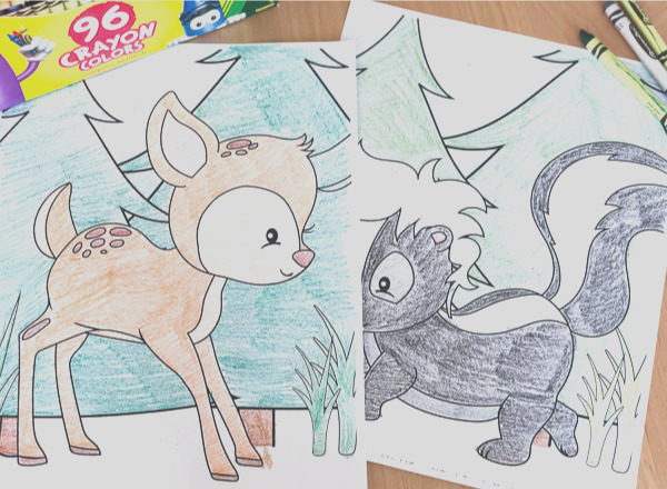 free printable forest animal coloring pages