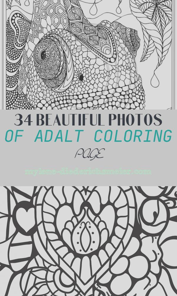 Adalt Coloring Page Beautiful Adult Coloring Page Coloring Home