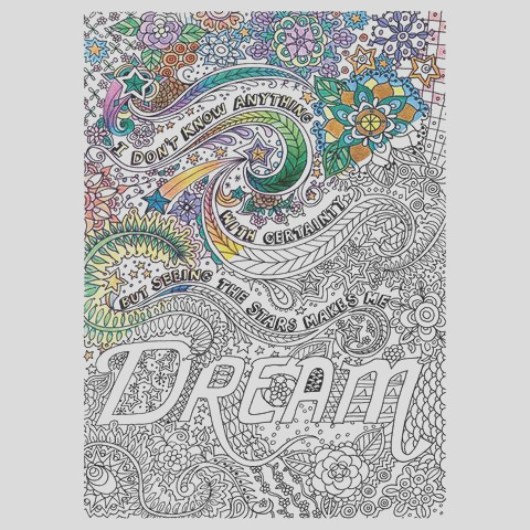 adult coloring canvas 16x20 w 12 markers dream