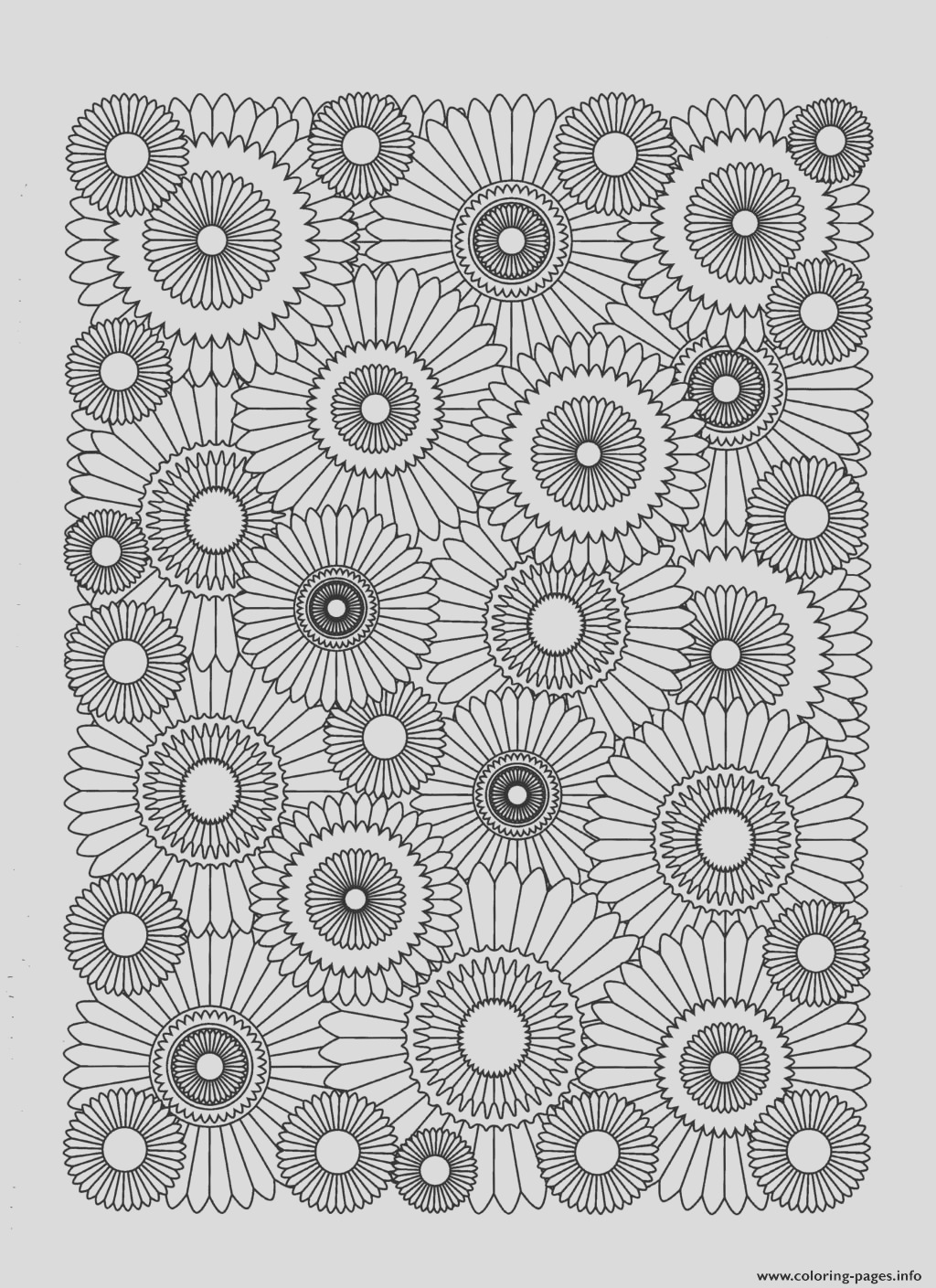 adult sunflower printable coloring pages book 3623