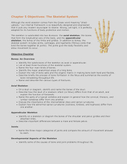 anatomy and physiology coloring workbook answers chapter 5 the skeletal system answer key