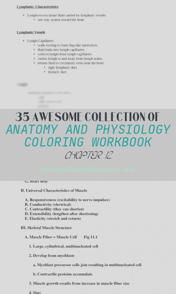 Anatomy and Physiology Coloring Workbook Chapter 12 Fresh Anatomy and Physiology Coloring Workbook Answers Chapter