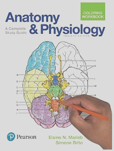 best anatomy coloring book