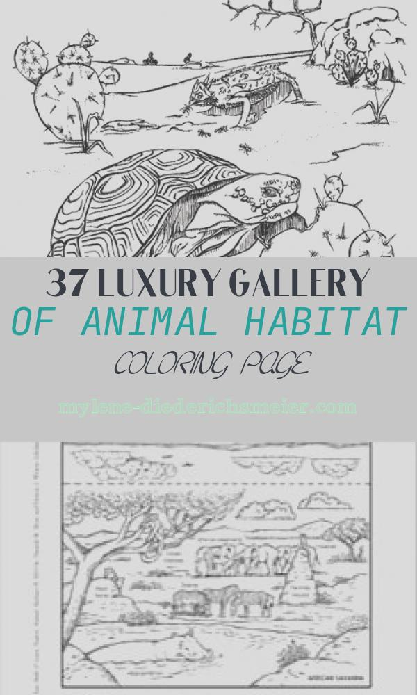 Animal Habitat Coloring Page Unique Animal Habitat Coloring Pages