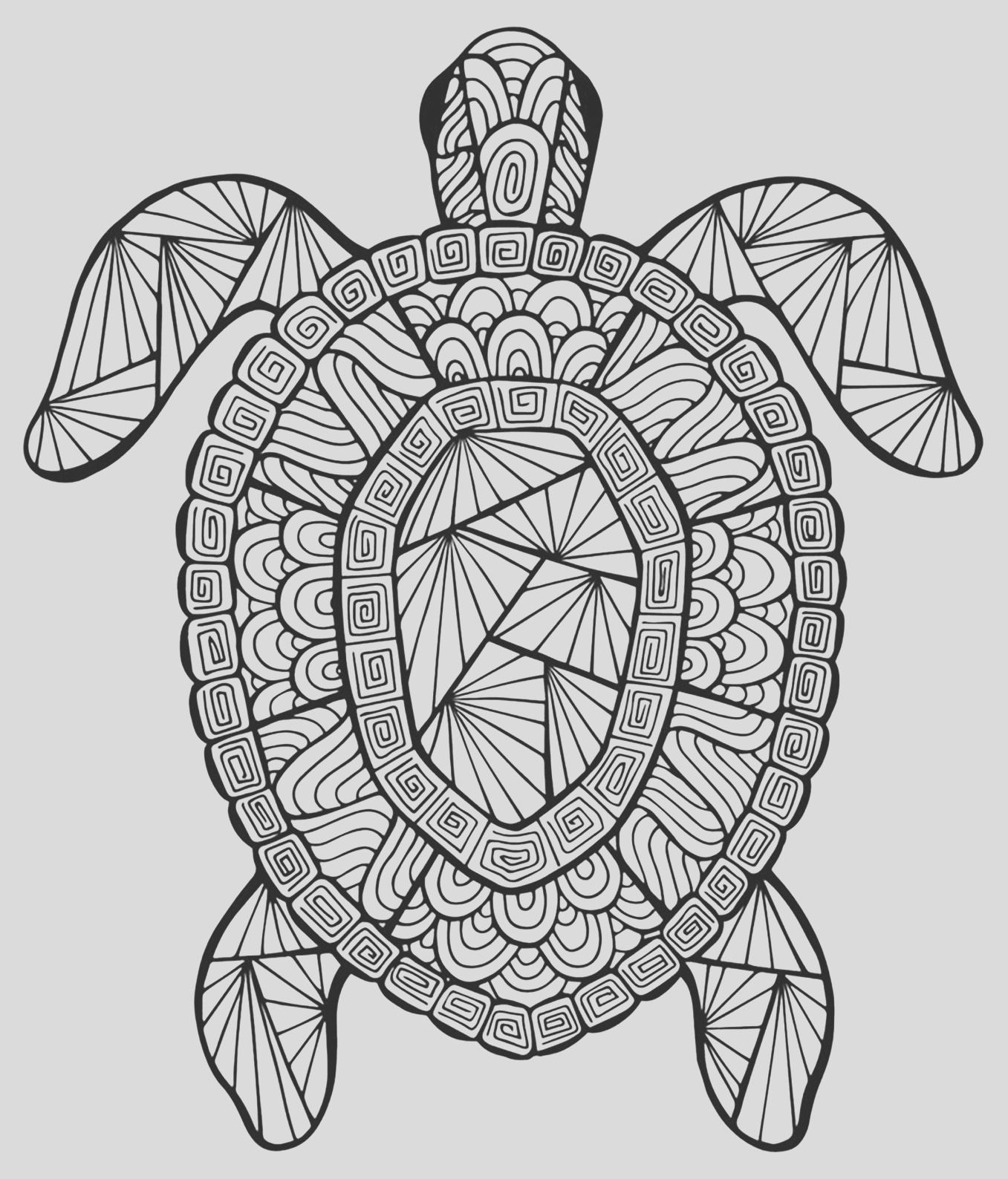 image=animals coloring page incredible turtle 1