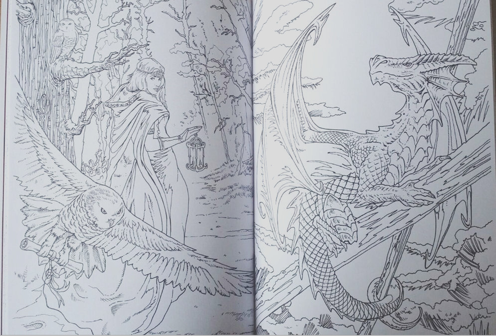 3988 Anne Stokes Coloring Book