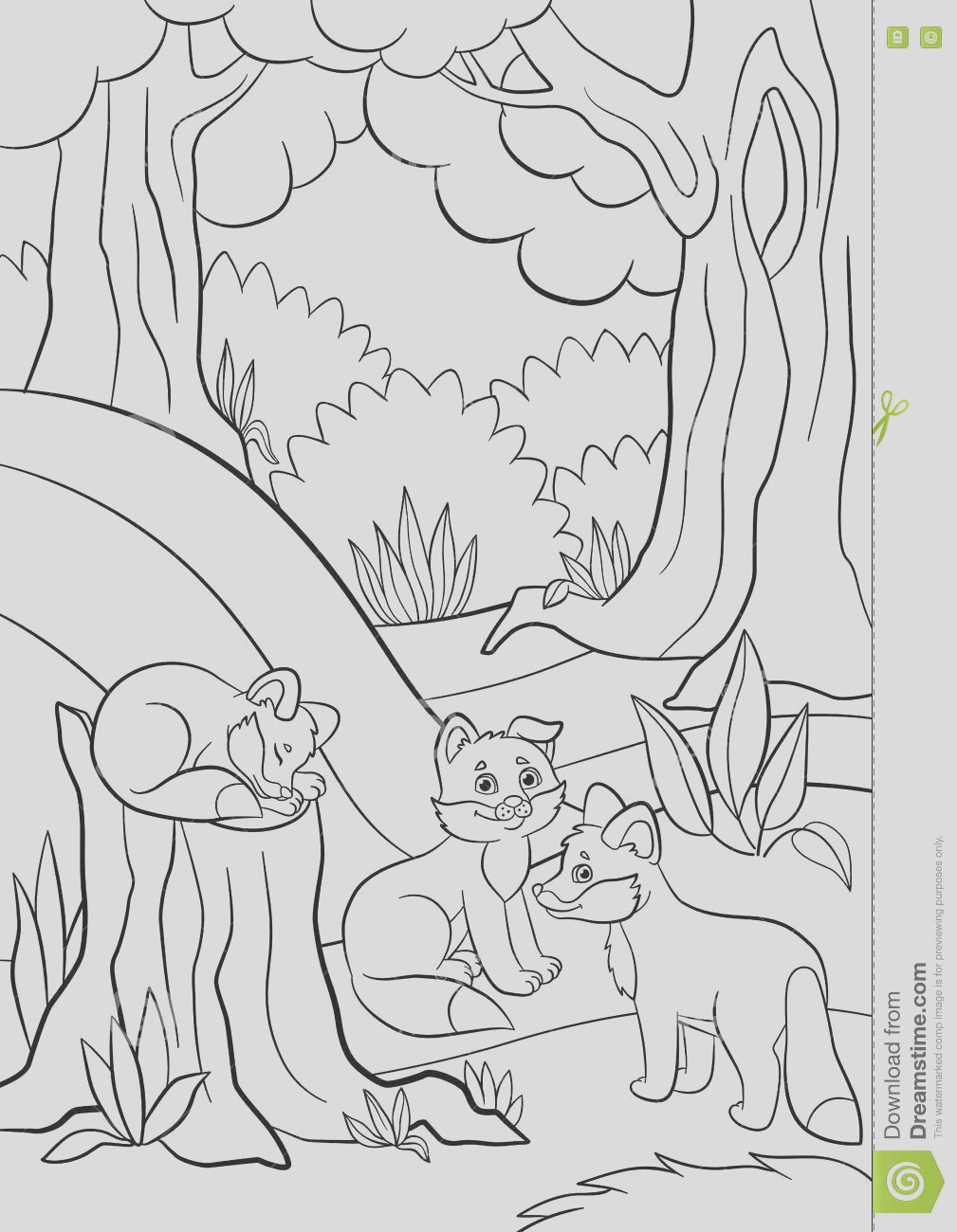 stock illustration coloring pages wild animals three little cute baby fox forest image