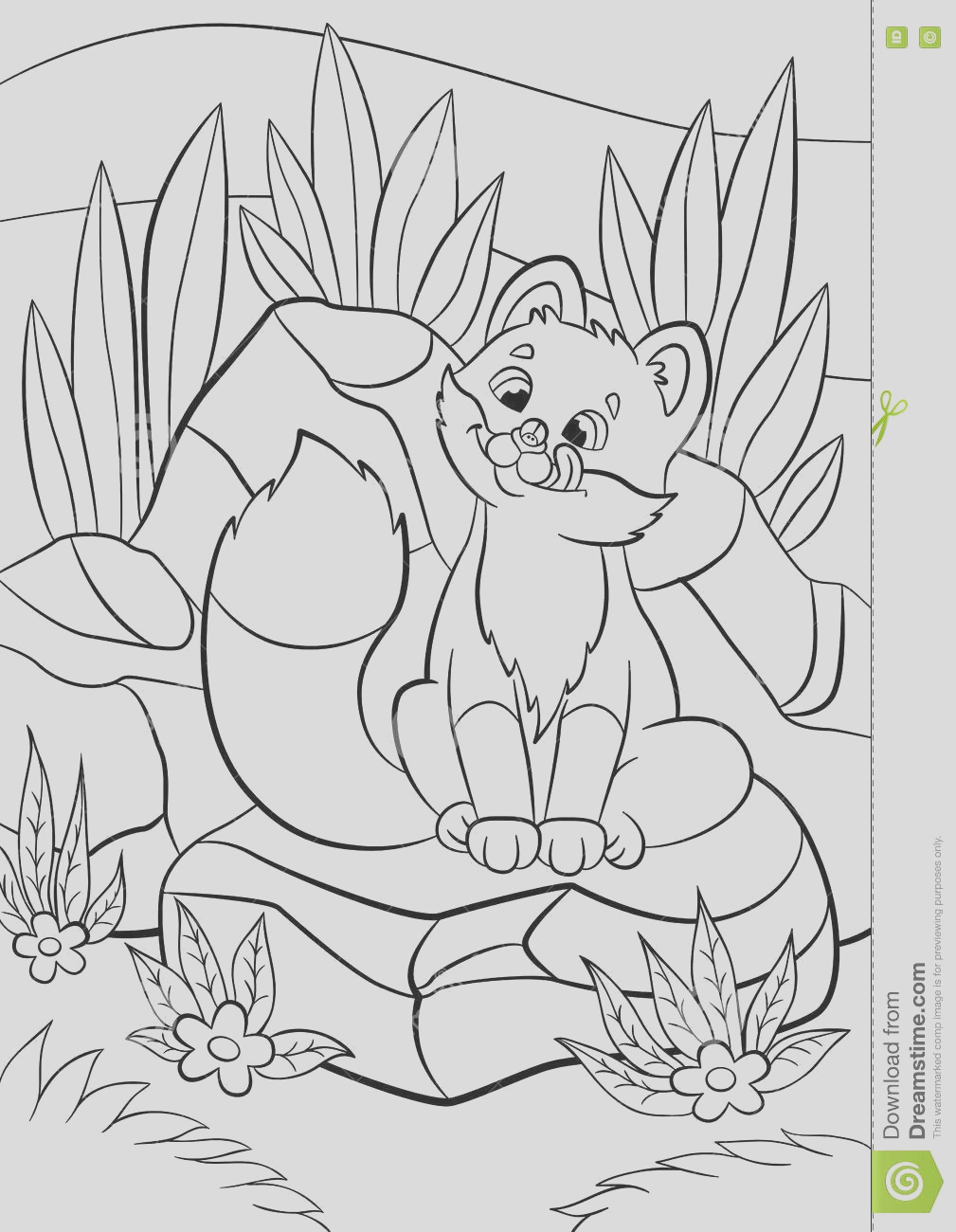 stock illustration coloring pages wild animals little cute baby fox looks bug his nose smiles there stones grass around image