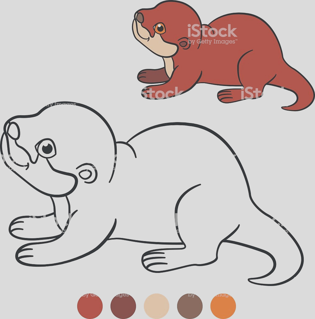 coloring page little cute baby otter smiles gm